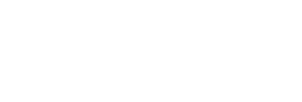 The Quinary Sector of Economy